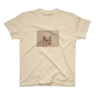 まもる T-shirts