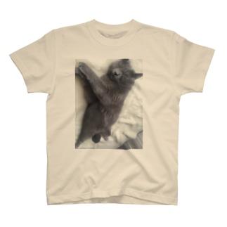 イブ鎮魂 T-shirts