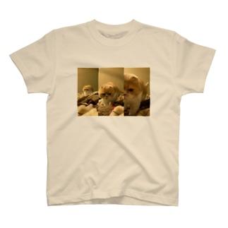 踏みにくるマルティ T-shirts