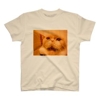 すそ広がり顔マルちん T-shirts
