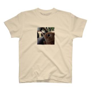 ぽんちゃ運転中 T-shirts