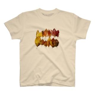 ちいさいあき(グラデーション) T-Shirt