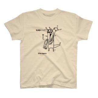 カワウソ~イカ編~ T-shirts