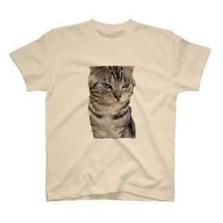 あろまんさん T-shirts