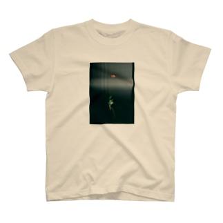 AW18 - Oshibana - ケシ T-shirts