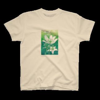ponsukeのニリンソウ T-shirts