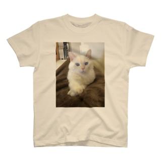 キリリそらくん T-shirts