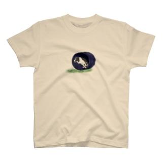 Bordercollie Black&White Tunnel  T-shirts