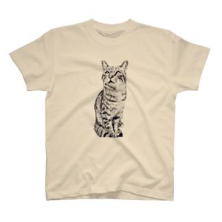 トラ猫トラ君 T-shirts