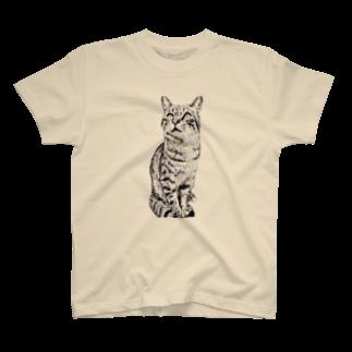 ちばっちょ【ち畳工房&猫ねこパラダイス】のトラ猫トラ君 T-shirts