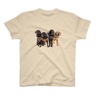 集合写真1 T-shirts