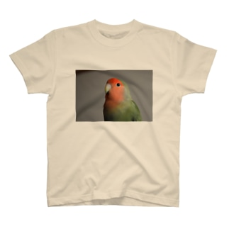 うちのとり T-shirts