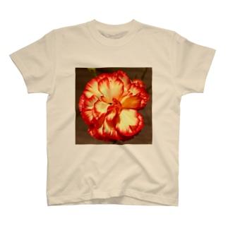 イケてるカーネーション T-shirts