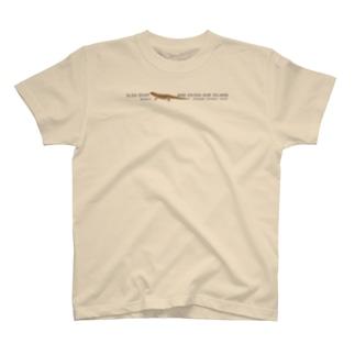 しまのなかまSLOW キシノウエトカゲ T-shirts