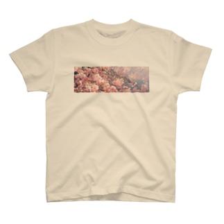 八重桜 T-shirts