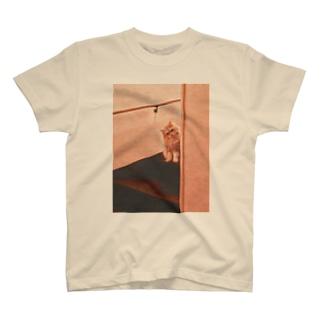 さびしんぼう  T-shirts