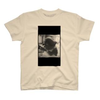 こぐまないぬ2 T-shirts
