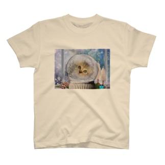 ドーム猫 T-shirts