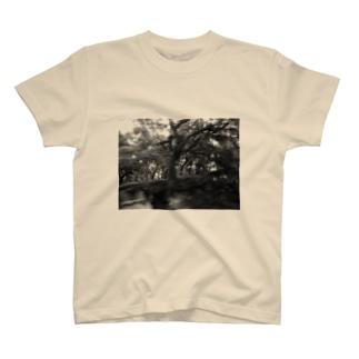 F2 T-shirts