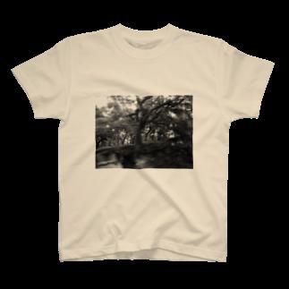 混沌コントロール屋さんのF2 T-shirts