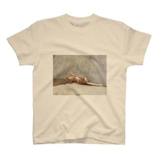 信頼 T-shirts
