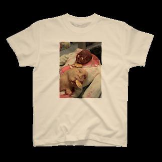 pocari666cの清水の作品!! T-shirts