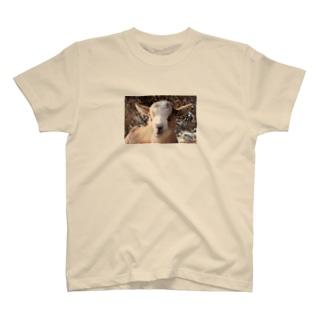 ピンボケ 子ヤギくん T-shirts