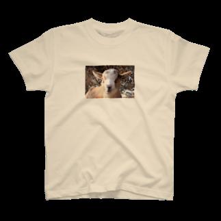 ino_taroのピンボケ 子ヤギくん T-shirts