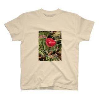 ピンクチューリップ T-shirts