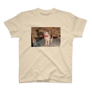 もなかと影 T-shirts