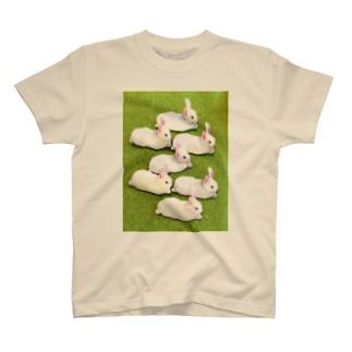 白兎群衆 T-shirts