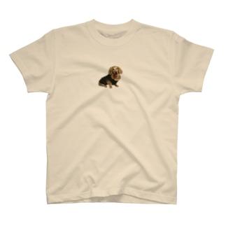 きりとられたワンコ T-shirts