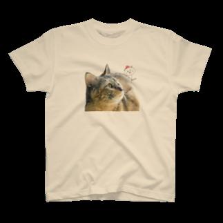カナブンの猫と猫 T-shirts