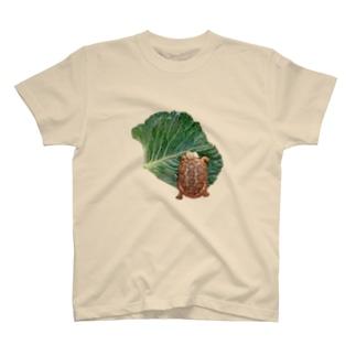 パンケーキリクガメ T-shirts