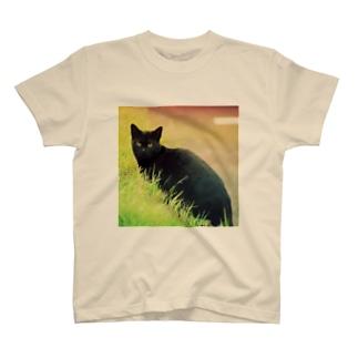 黒猫 T-shirts