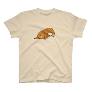 ねているうさぎとアマビエ T-Shirt