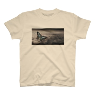 blue tiger  butterfly ブルータイガー 蝶 T-shirts