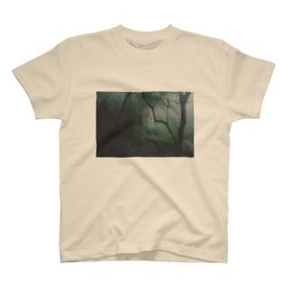 yakushima T-shirts
