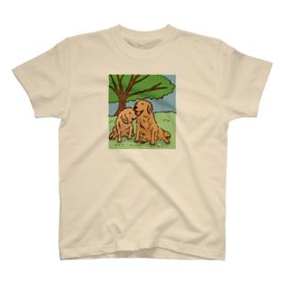 木漏れ日和のゴールデンレトリーバー T-shirts