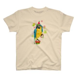 ルリコンゴウインコ T-shirts