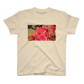 しずくの赤バラ T-shirts