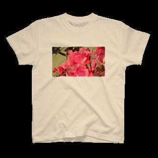 ヱリーのロマンチカのしずくの赤バラ T-shirts