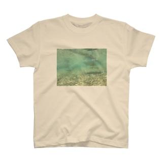 アヒルのお尻 T-shirts