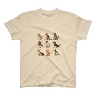犬たちのTシャツ T-shirts