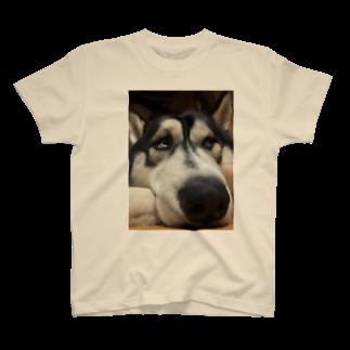 Dream Dog World 【夢犬】のたいくつじょ〜 T-shirts