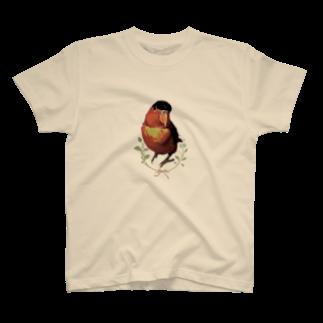 うちのインコズのマニアックインコ(ひなひな) T-shirts