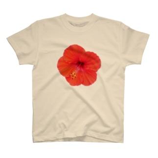 ハイビスカス・レッド① T-shirts