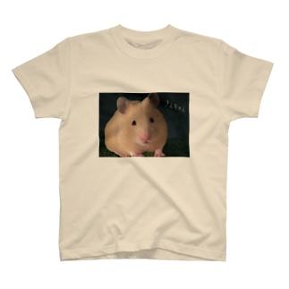 キンクマハムスターのきんちゃん T-shirts