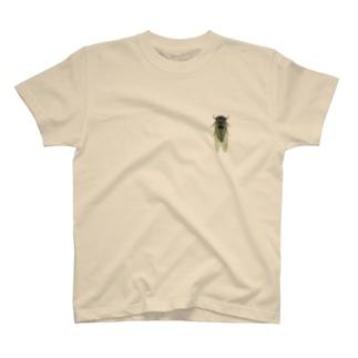 クマゼミ止まってますよ。 T-shirts
