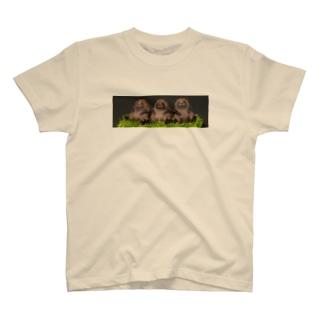 太っちょタヌキくん T-shirts